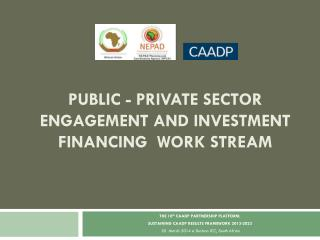 PUBLIC - PRIVATE SECTOR ENGAGEMENT AND INVESTMENT FINANCING  WORK STREAM