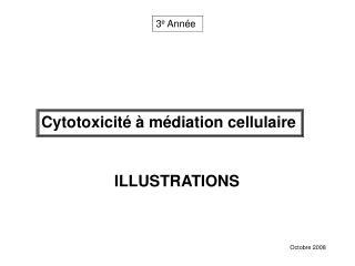 Cytotoxicité à médiation cellulaire