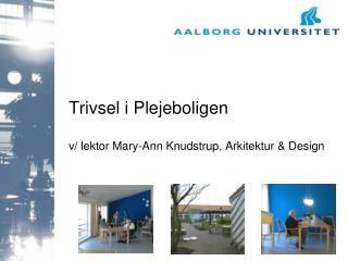 Trivsel i Plejeboligen v/ lektor Mary-Ann Knudstrup, Arkitektur & Design