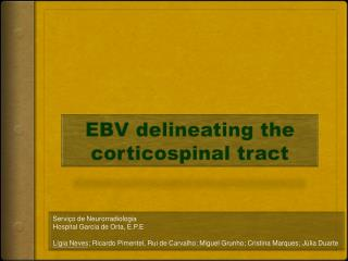 EBV delineating the corticospinal tract