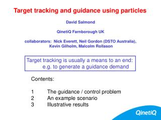 Target tracking and guidance using particles