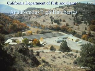 Iron Gate Hatchery