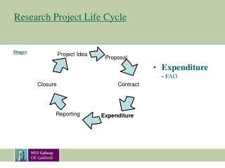 Research Project Life Cycle