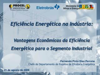 Fernando Pinto Dias Perrone Chefe de Departamento de Projetos de Eficiência Energética