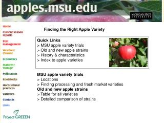 Finding the Right Apple Variety