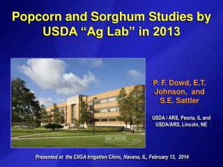 "Popcorn and Sorghum Studies by  USDA ""Ag Lab"" in 2013"