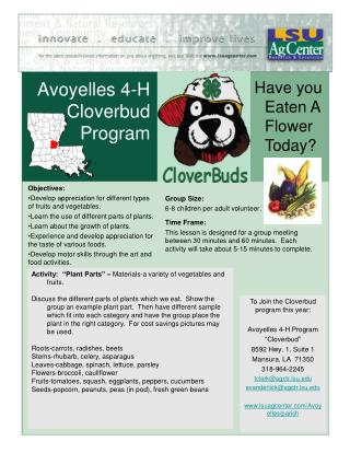 Avoyelles 4-H Cloverbud Program