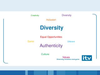 Creativity Diversity  Inclusion Diversity  Equal Opportunities Same Different Authenticity