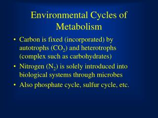 Environmental Cycles of Metabolism