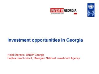 Investment opportunities in Georgia Heidi Eterovic, UNDP Georgia