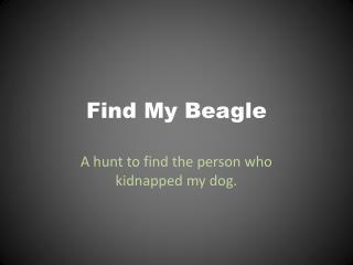 Find My Beagle