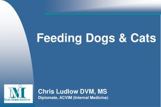 Feeding Dogs & Cats