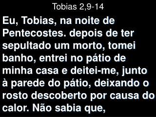 Tobias 2,9-14