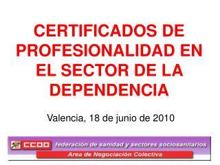 CERTIFICADOS DE PROFESIONALIDAD EN EL SECTOR DE LA DEPENDENCIA