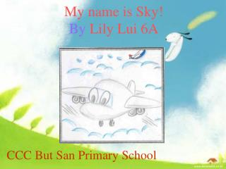 My name is Sky! By  Lily Lui 6A