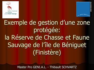 Master Pro GENI.A.L. - Thibault SCHVARTZ