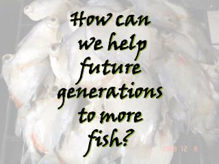 How can  we help  future generations  to more  fish?