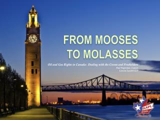 FROM  MOOSEs  TO MOLASSES