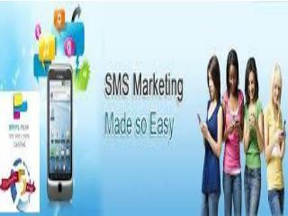 Bulk SMS Solution Provider Noida