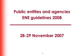Public entities and agencies ENE guidelines 2008 28-29 November 2007