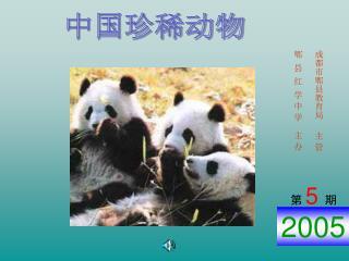 中国珍稀动物