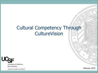 Cultural Competency Through CultureVision