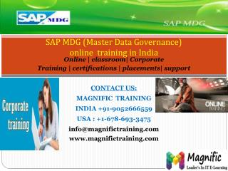 SAP MDG ONLINE TRAINING IN SOUTH AFRICA