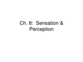 Ch. 8 Senses