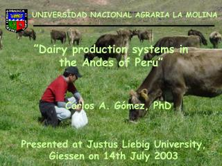 """Dairy production systems in the Andes of Peru"""