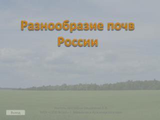 Разнообразие почв России