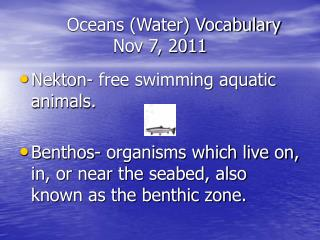 Oceans (Water) Vocabulary Nov 7, 2011