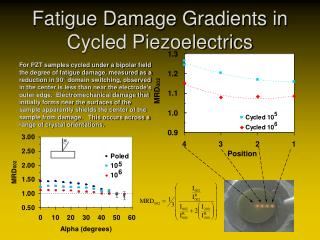 Fatigue Damage Gradients in Cycled Piezoelectrics