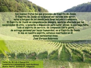 Son buenos frutos los que proceden del Espíritu de Jesús.