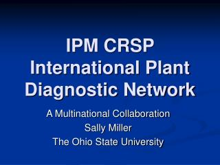 IPM CRSP International Plant Diagnostic Network