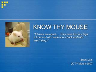 KNOW THY MOUSE