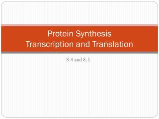 Protein Synthesis Transcription and Translation