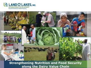 Strengthening Nutrition and Food Security along the Dairy Value Chain