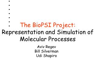 The BioPSI Project:  Representation and Simulation of Molecular Processes