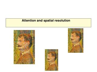 Attention and spatial resolution