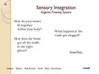 Sensory Integration Gigantic Freeway System