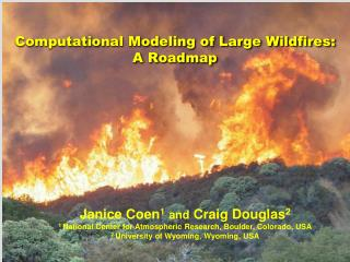 Computational Modeling of Large Wildfires: A Roadmap