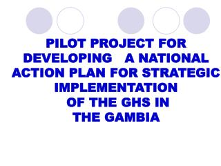 PILOT PROJECT FOR  DEVELOPING   A NATIONAL  ACTION PLAN FOR STRATEGIC IMPLEMENTATION