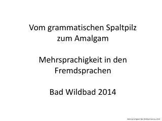 Vom grammatischen Spaltpilz zum Amalgam Mehrsprachigkeit in den Fremdsprachen Bad Wildbad 2014