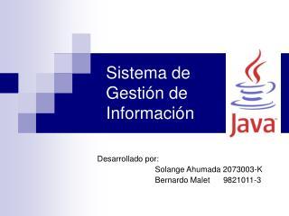 Sistema de Gestión de Información