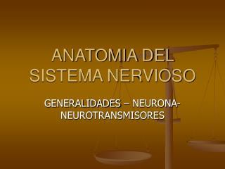 ANATOMIA DEL SISTEMA NERVIOSO