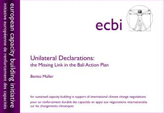 Unilateral Declarations:  the Missing Link in the Bali Action Plan Benito M üller