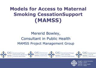 Models for Access to Maternal Smoking CessationSupport (MAMSS)
