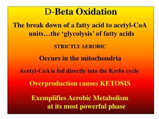 D- Beta Oxidation