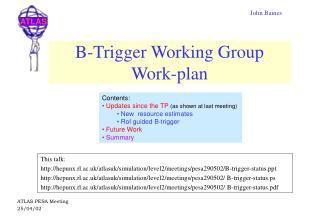 B-Trigger Working Group Work-plan