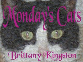 MONDAY CATS